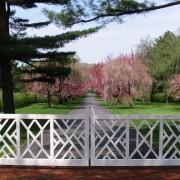 NJ Country Estate - Driveway